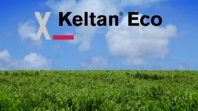 Keltan Eco – biobasierter Kautschuk